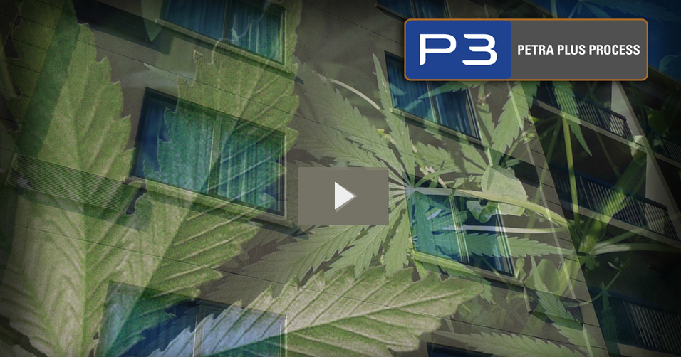 Medical and Recreational Use of Marijuana & Employer Rights
