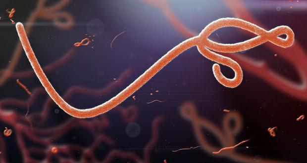 Ebola-620x330